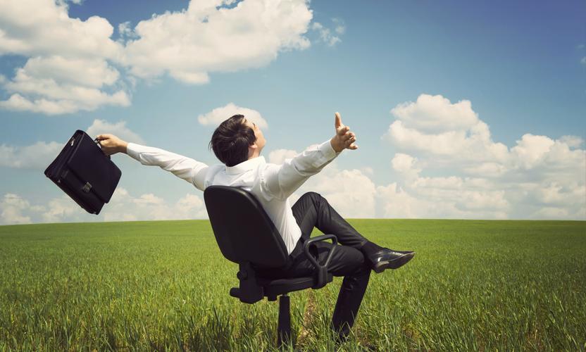 Les Solutions De Bureau Virtuel La Vie En Rose Cio Practice