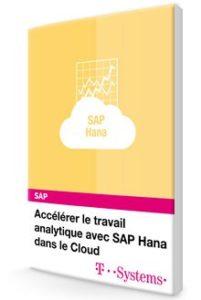 accélérer SAP HANA