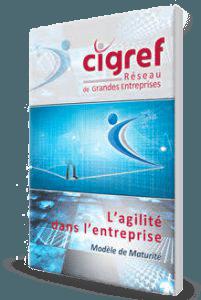 Télécharger le rapport du Cigref – L'agilité dans l'entreprise : quel modèle de maturité ?